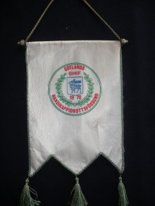 Gotlands Handikappidrottsförbund