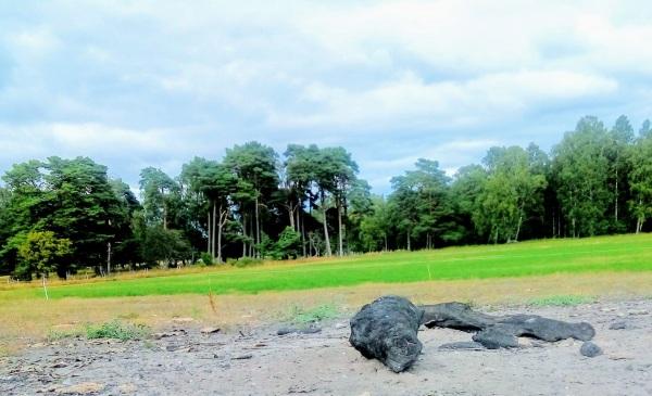 Jag har återfunnit den gamla bortglömda fotbollsplanen i Vamlingbo! Här bakom Majbrasan var Vamlingbos första fotbollsplan från 1920-talet, belägen. Vamlingbo IF:s hemmaplan.