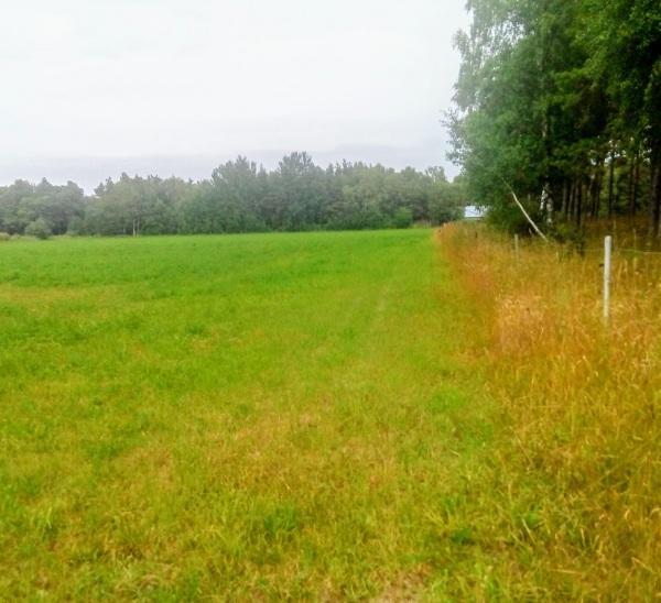 Martebo IP, (vid Utgården). Kör mot Martebo Utgårda, söder om kyrkbyn. Den gamla planen låg bakom talldungen, till höger i färdriktningen. Martebo BK och Martebo GoIK:s hemmaplan, på 1930 och 1940-talen.