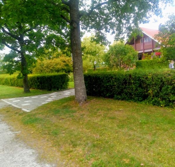 Lärbro IP (gamla planen) Den användes som träningsplan till 1972, sen byggde Gahnströms åkeri sitt hus här i sydöstra Lärbro invid den gamla bygdegården. Planen låg vid Vägumevägen och hade även löparbanor av kolstubb. Lärbro IF:s hemmaplan före 1958.