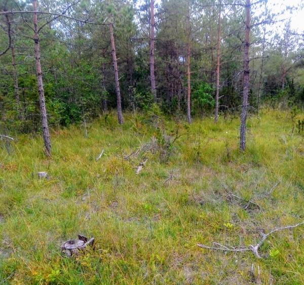 Boge IP. Planen låg 200 meter söder om Bogekors. Seriespel 1940/41. Boge IF:s hemmaplan.