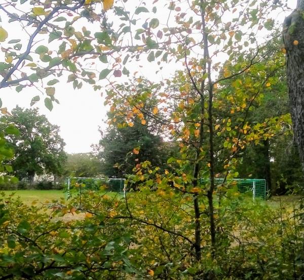 Gandarve IP, Dalhem. Dalhem IF:s andra hemmaplan (90x45 meter) som användes mellan 1933-1955 låg i Gandarve änge, 100 meter norr om Hesselby jvgstn. Färger: vit/blå. Seriespel från 1935- Nuförtiden används ett förminskat Gandarve IP, av de yngre lagen i Dalhem IF.